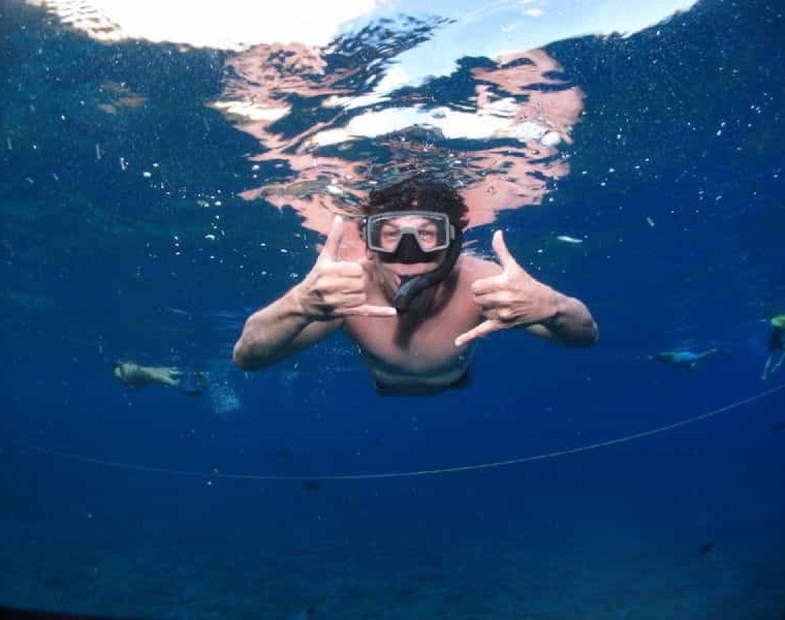 Snorkle Maui